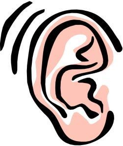 ear.jpg?w=251